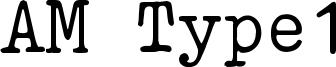 AM Type1 Font