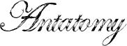 Antatomy Font