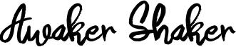 Awaker Shaker Font