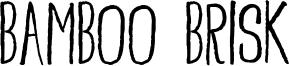 Bamboo Brisk Font
