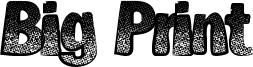 Big Print Font