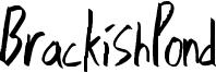BrackishPond Font