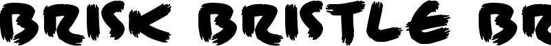 Brisk Bristle Brush Font