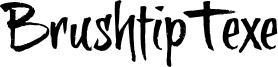 BrushtipTexe Font