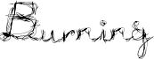 BURNL___.TTF