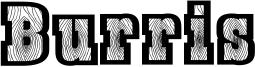 Burris Font