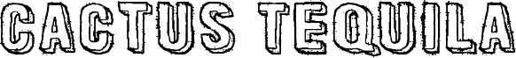 Cactus Tequila Font