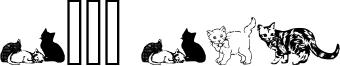 Cats CSP Font