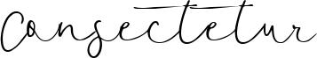 Consectetur Font