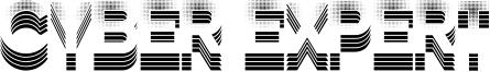 Cyber Expert Font