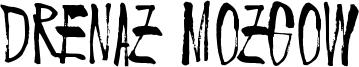 Drenaz Mozgow Font
