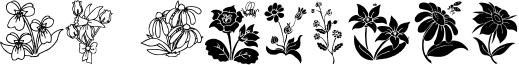 DT Flowers 2.ttf