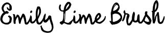 Emily Lime Brush Font