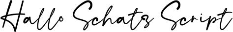 Hallo Schatz Script Font