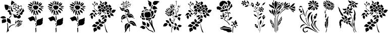 HFF Floral Stencil.otf