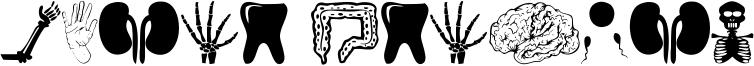 Human Anatomy Font