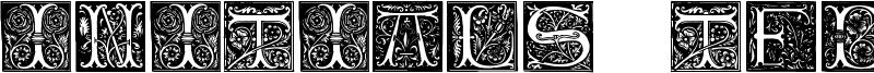 Initials TFB Font