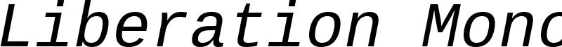LiberationMono-Italic.ttf