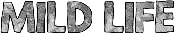 Mild Life Font