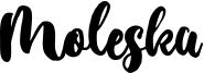 Moleska Font