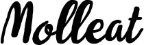 Molleat Italic.otf