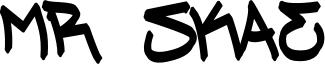 Mr Skae Font