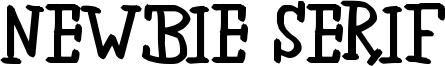 Newbie Serif Font