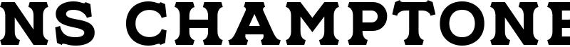 NS Champtone Serif Font