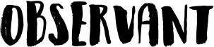 Observant Font