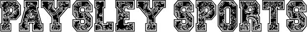 Paysley Sports Font