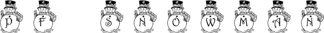 Pf_snowman-3.ttf