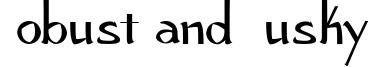 Robust and Husky Font