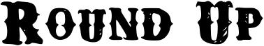 Round Up Font