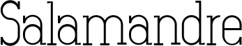 Salamandre Font