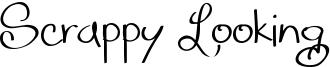 Scrappy Looking Font