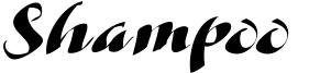 Shampoo Font