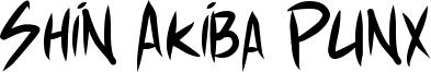 Shin Akiba Punx Font