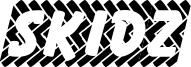 Skidz Font