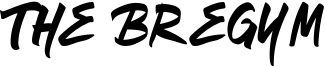 The Bregym Font