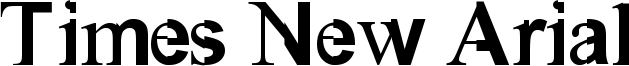 Times New Arial Font