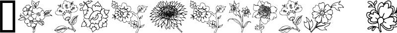 Traditional_Floral_Design_III.ttf