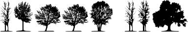 Trees TFB Font
