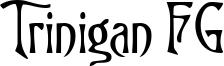 Trinigan FG Font
