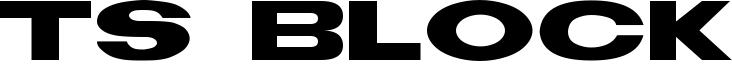TS Block Font