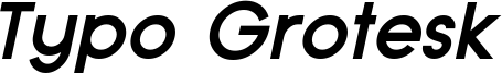 Typo Grotesk Bold Italic Demo.otf