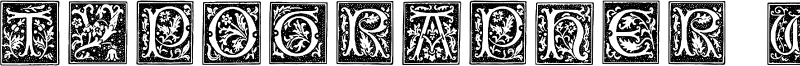 Typographer Woodcut Initials One Font