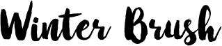 Winter Brush Font