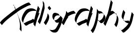 Xaligraphy ThinItalic.ttf
