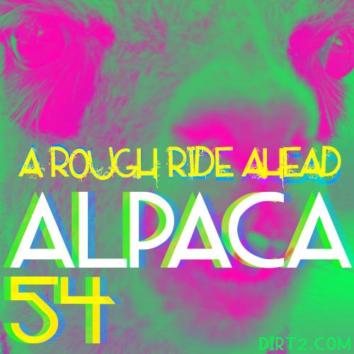 Alpaca 54