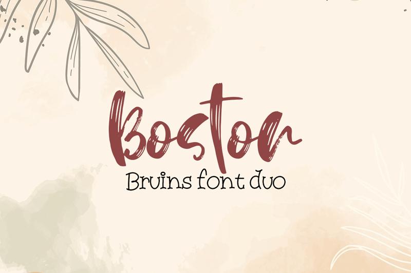 Boston Bruins Script
